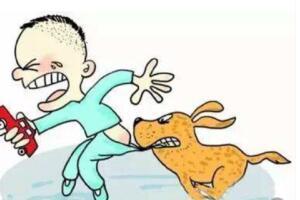 狂犬病潜伏期
