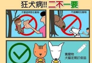 狂犬病传播方式