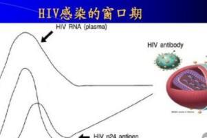 艾滋病窗口期