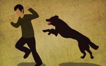 判断一个人得狂犬病